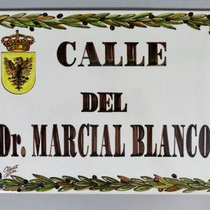 Placa de Calle 31 x 45 Hojas Aceitunas